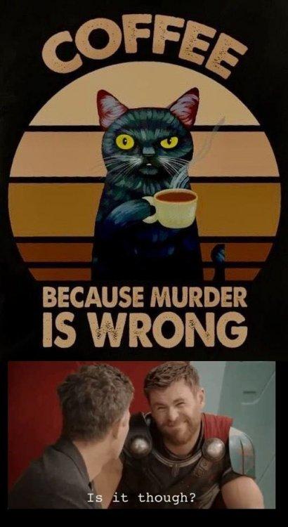 murderiswrongisitthough.jpg