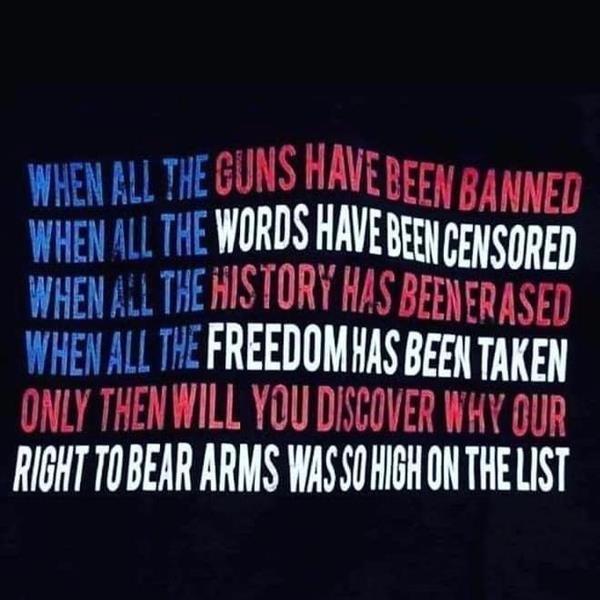 banned guns.jpg