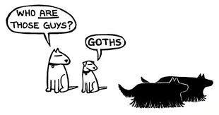 dog funny.jpg