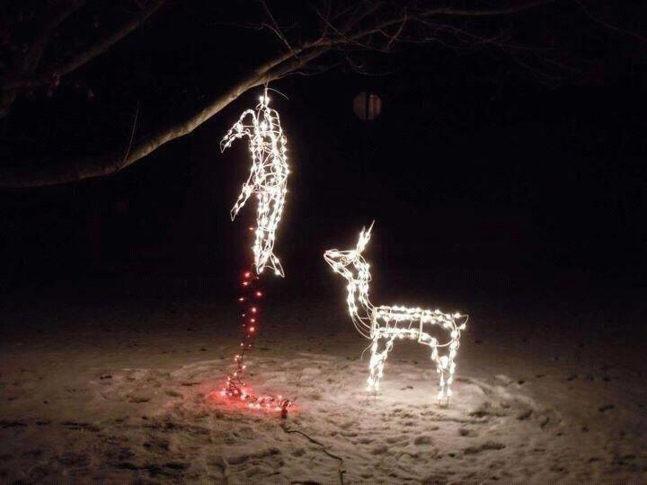 deer hanging.jpg