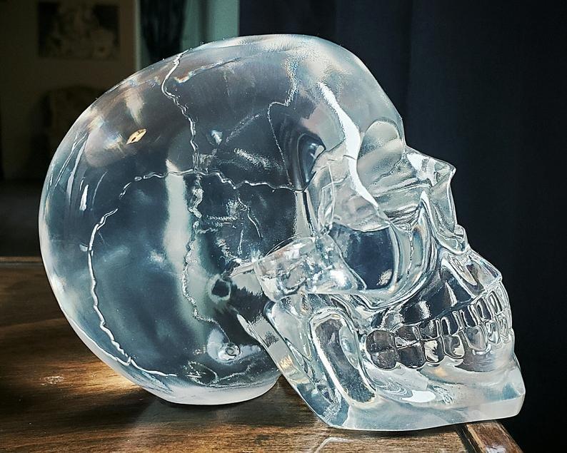 skull.jpg.e37d7dca786c56f00dd4523b9ec73e4e.jpg