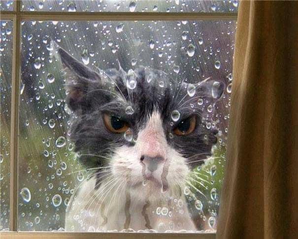 Don't let it in.jpg