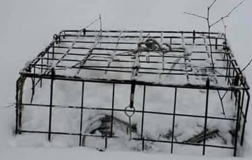 snow crab trap.jpg