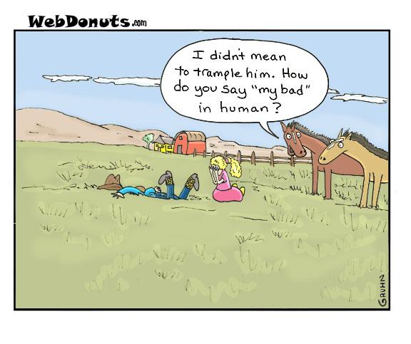 2010-09-08-horses.jpg