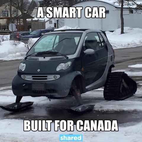 Cdn Smart Car Winter Package.jpg