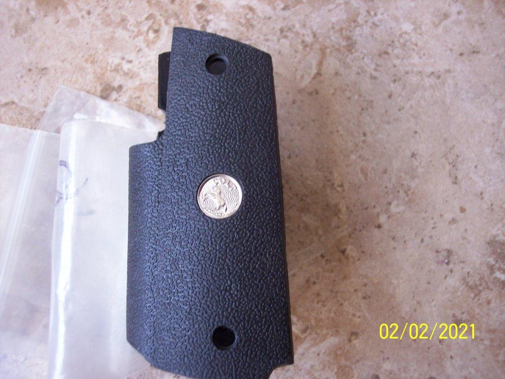 Grips & S&W 19 012.JPG