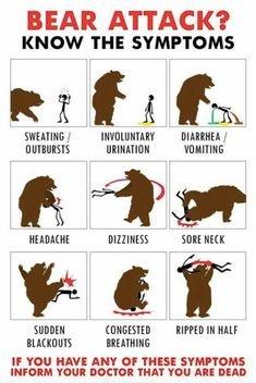Bear attack symptoms.jpeg