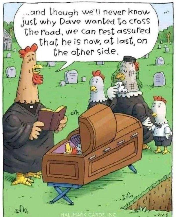 chicken done.jpg