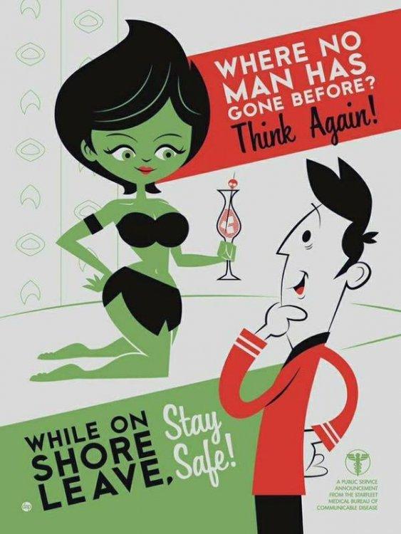 Starfleet VD Poster.jpg