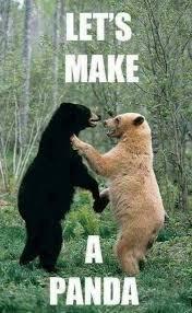 Make a Panda .jpg