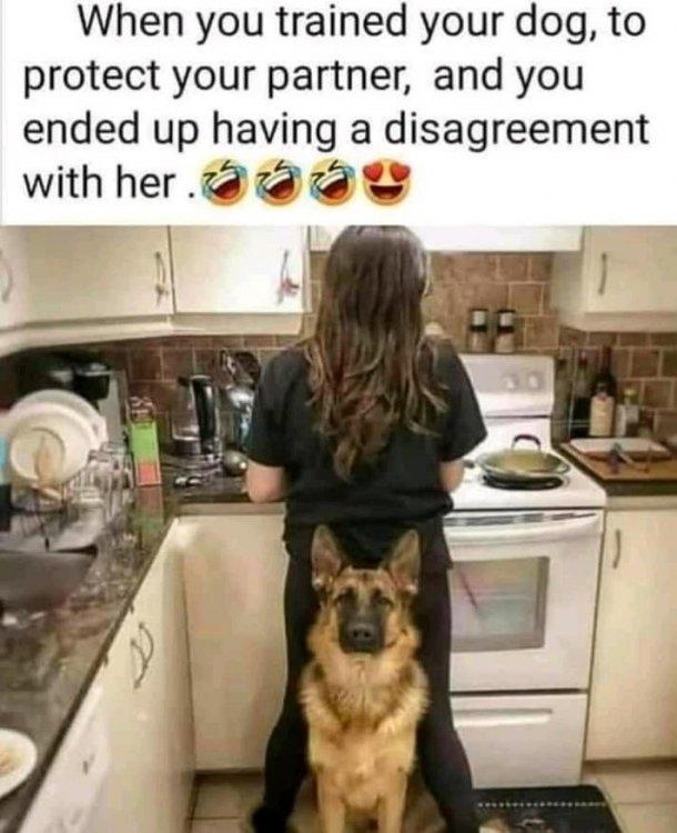 protecting wife.jpg
