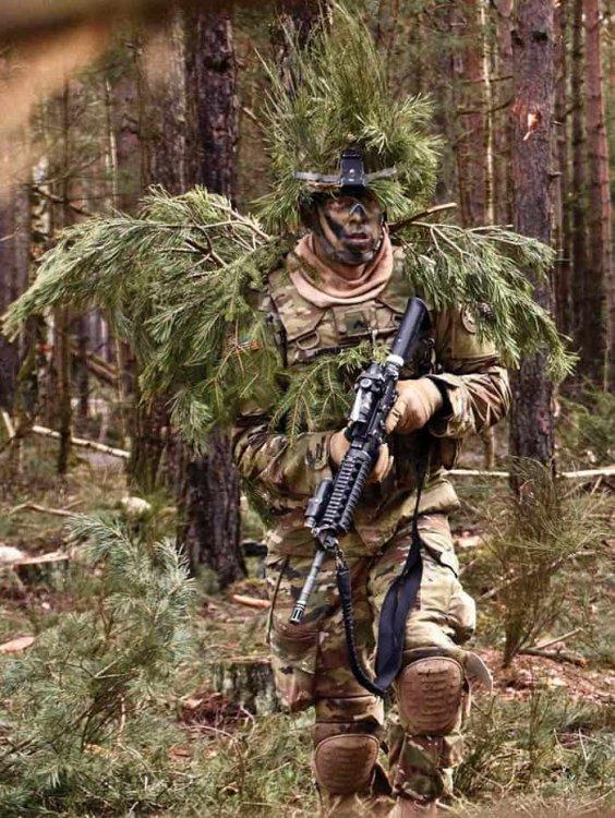 CC16-3-combat.thumb.jpg.87cc57701f5fcc3bd8ddf245b0c2f60f.jpg