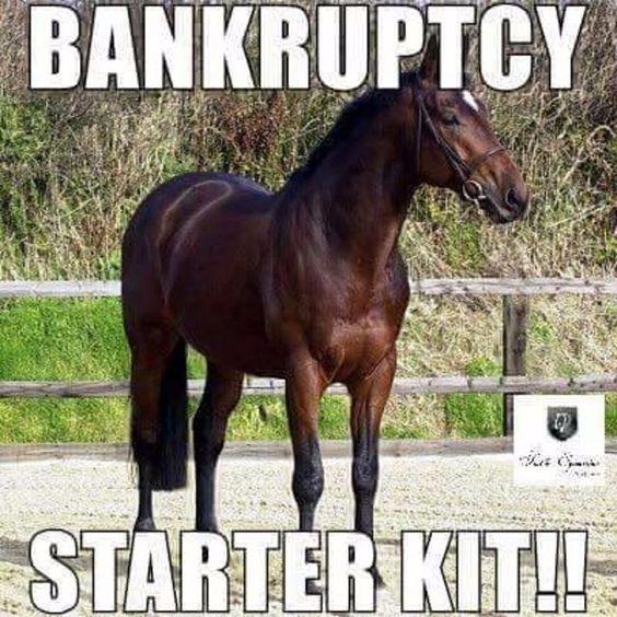 Horse Bankruptcy Starter Kit.jpg