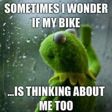 Kermit-the-Frog-motorcycle-meme.jpg