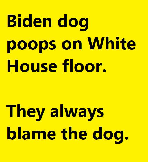 blamethedog.png