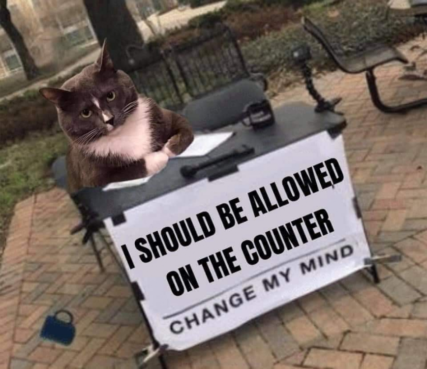 catcounter.png
