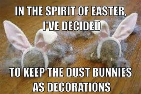 dustbunnies.jpg