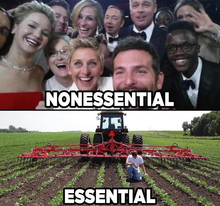 essentialvsnonessential.jpeg