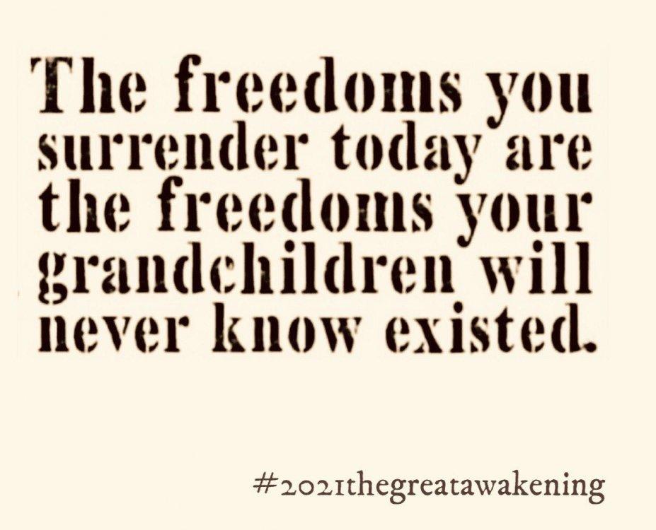 freedomsyourgrandchildrenwillneverknow.jpg