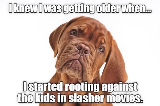 i-knew-i-was-getting-older-when.jpg.5f6a1f71f793ffc12b5d344ce52e93f1.jpg
