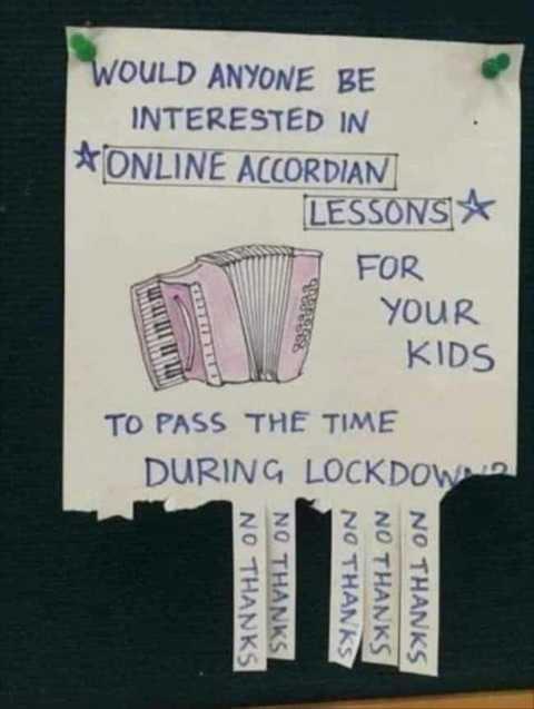 interested-online-accordian-lessons-lockdown.jpg