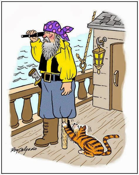 piratecatscratch.jpg