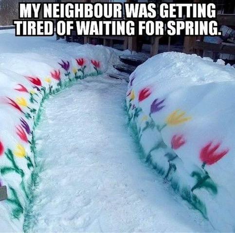 spring.jpg.c51750bfb565a13a23a1e99da00c497e.jpg