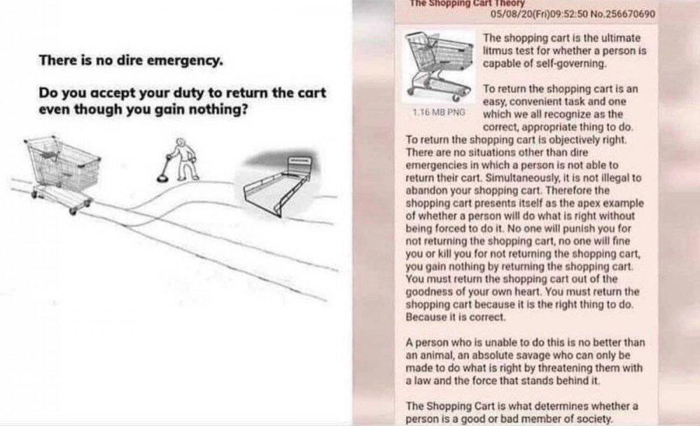 theshoppingcart.jpg