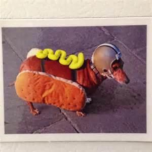 Hot dog.jpeg