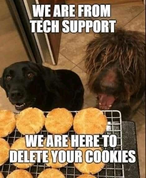 dog techs.jpg