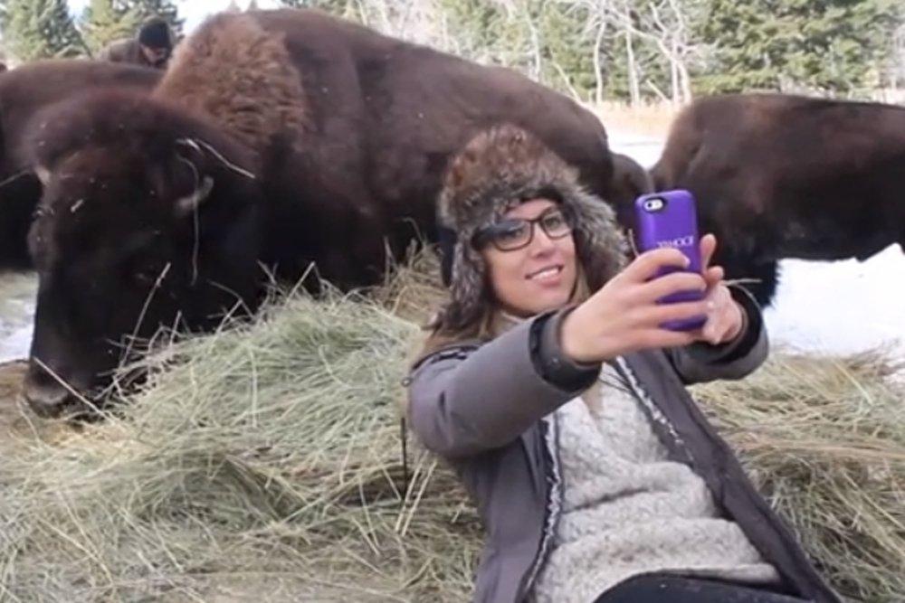 bison selfie 3.jpg