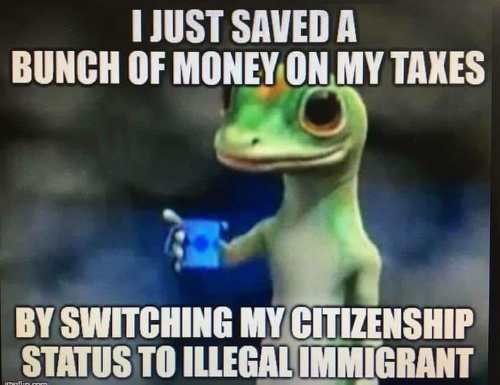 geico-i-just-saved-bunch-of-money-on-taxes-by-switching-citizenship-to-illegal-immigrant.jpg