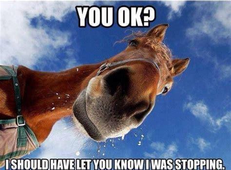stoppinghorse.jpg
