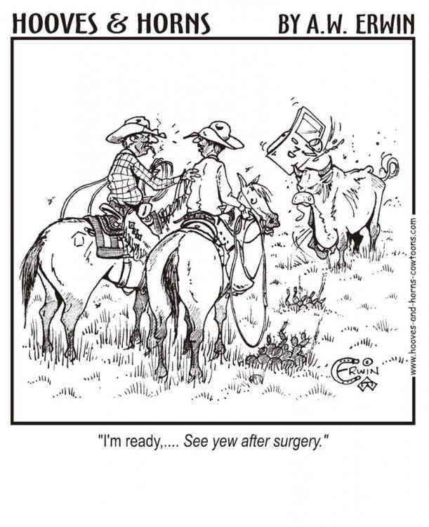hh surgery.jpg