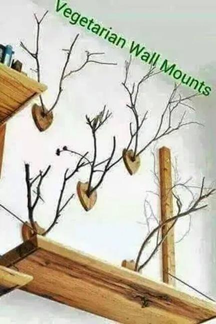 wall mounts.jpg