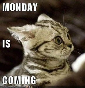 Monday is Coming ef7a436.jpg