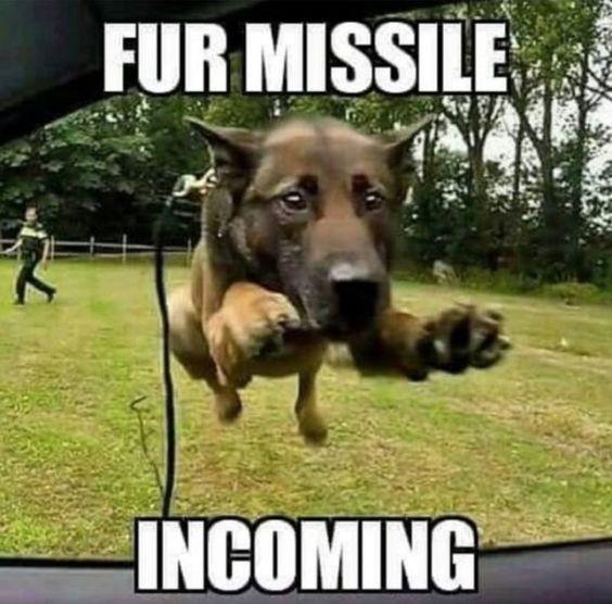 fur missile.jpg