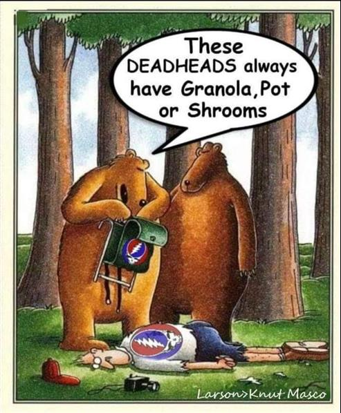 dead head.jpg