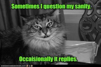 catsanity.jpg