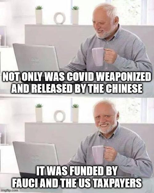 chinesecovidwithusfunding.jpg