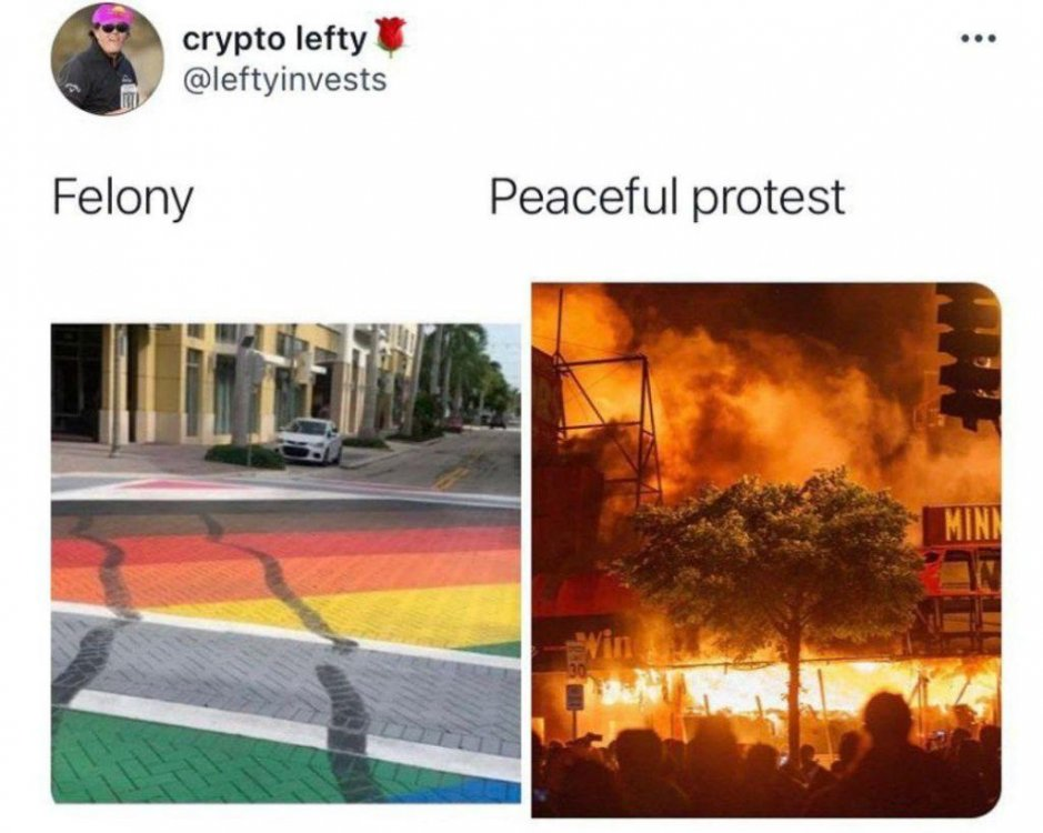 felonypeacefulprotest.jpeg