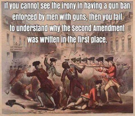 gunstoenforcegunlaws.jpg