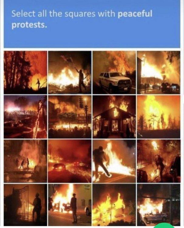 peacefulprotestscaptcha.jpeg