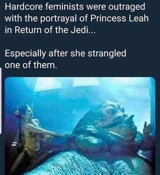 princessleah.jpeg
