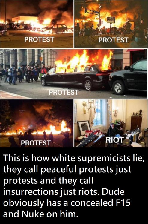 protestvsriot.png