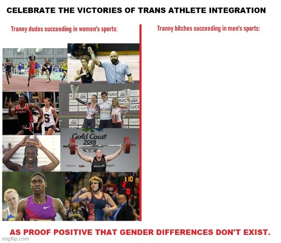 transsportsisfair.jpg