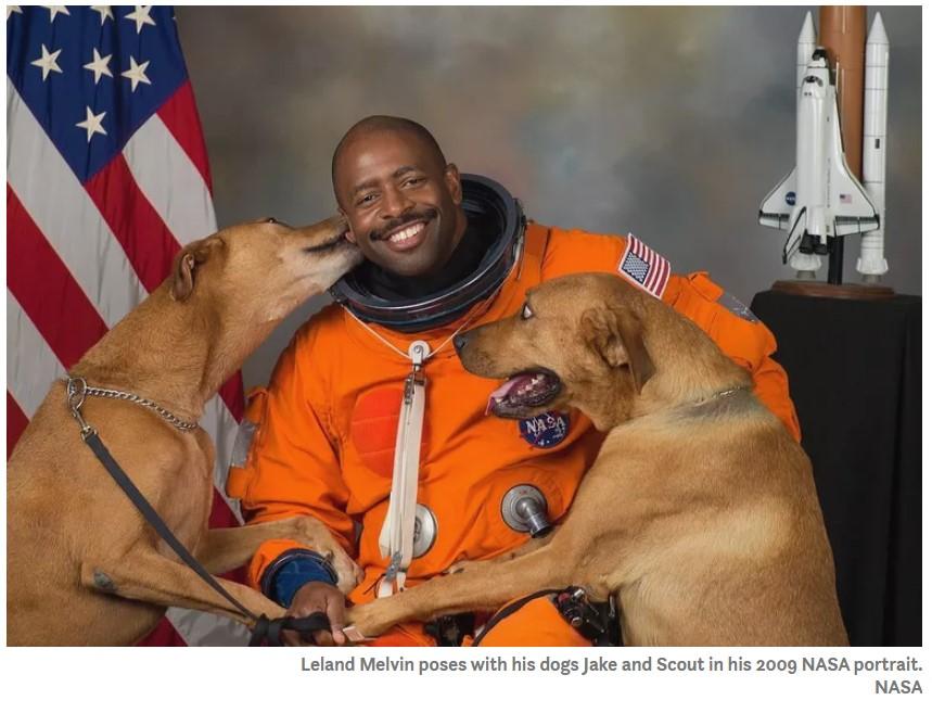 511395508_spacedogs.jpg.ed9ebe43320bec9ca1af2eb8947600e7.jpg