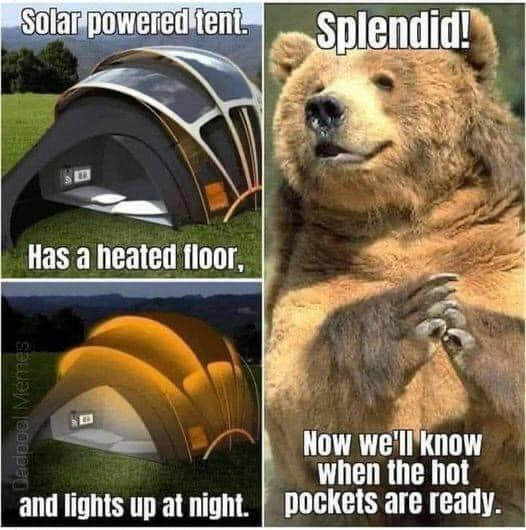 bear hot pocket.jpg