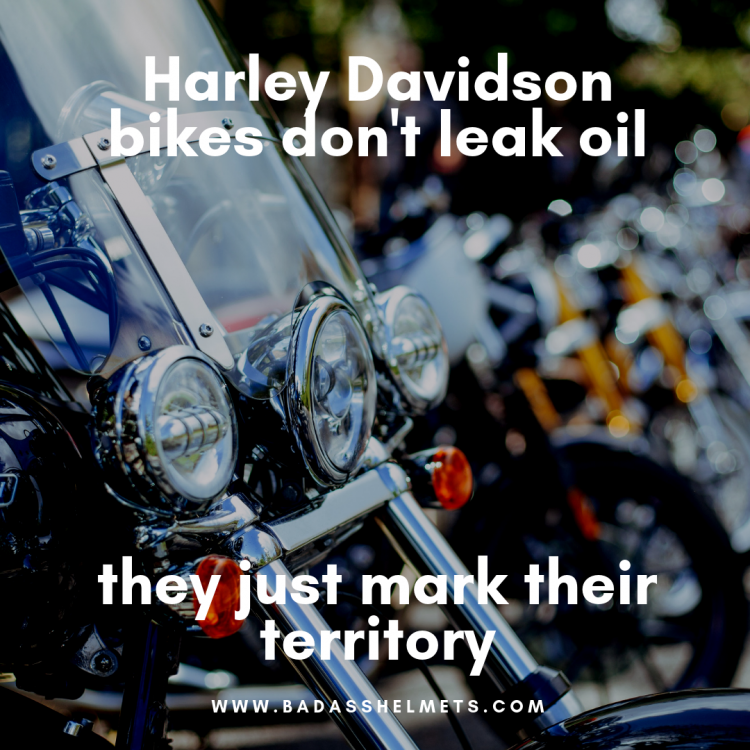 6929003_full-quotes-by-harley-davidson-about-work-29-funny-motorcycle-memes-quotes-sayings-bahs.png