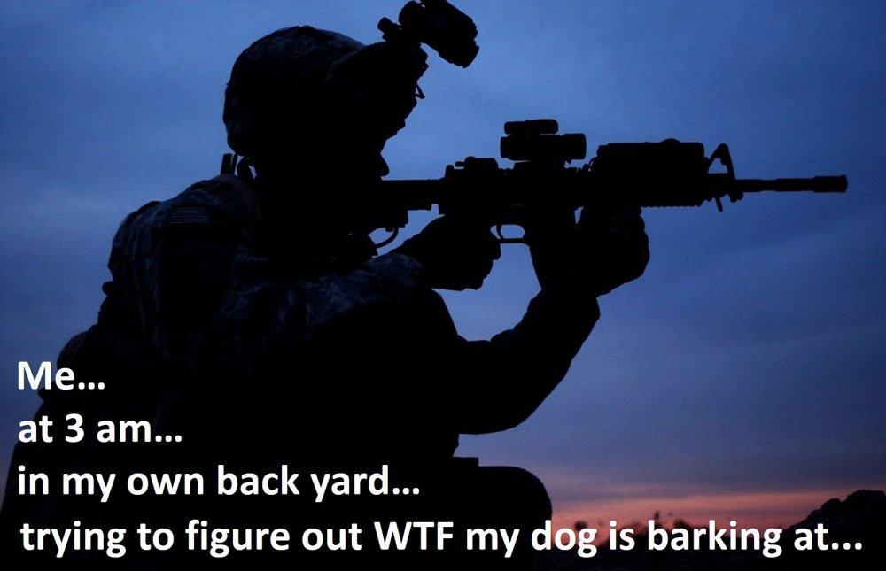 barking dog.jpg
